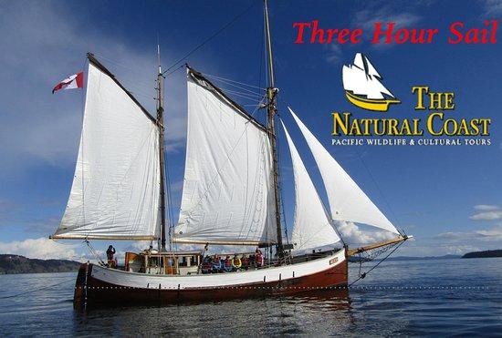 3-Hour Sail