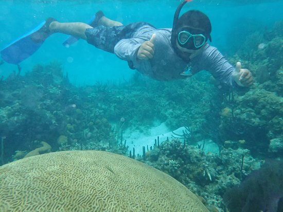 Glovers Reef Atoll, Belize: Nigel & the big brain!