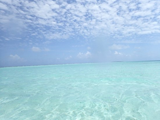 Glovers Reef Atoll, Belize: no filter, these are really the colors out there!