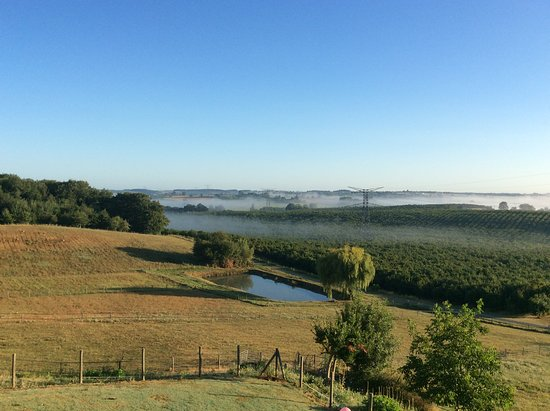 Labretonie, ฝรั่งเศส: Early morning veiw from the Gites