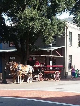 Savannah Historic District: 20180809_093944_large.jpg