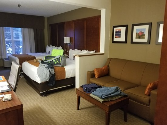 Comfort Suites Marquette: Our room!