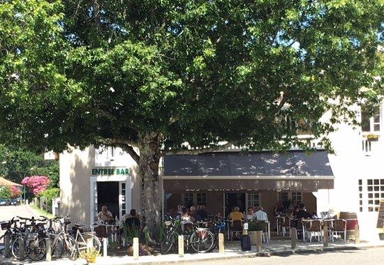 Levignacq, Francia: Man sitzt unter einer dicken Pyrenäen-Eiche
