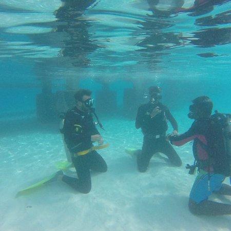 Diving Bluetribe Moofushi : photo1.jpg