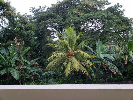 Kolonia, Micronésia: 7 Stars Inn