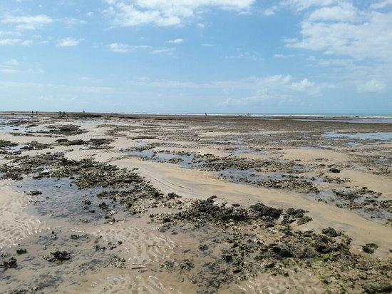 Praia do Parracho: 20180814_113328_large.jpg