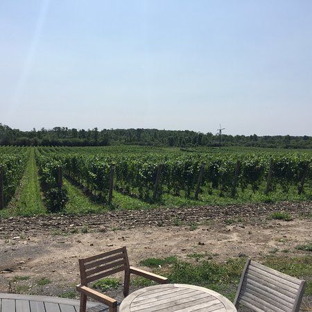 Great site, wine and food!
