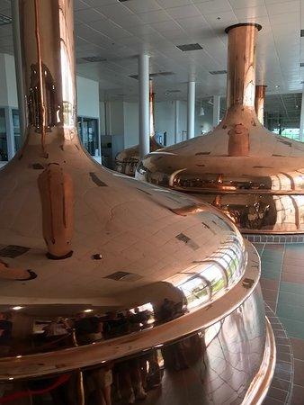 Shiner, Техас: Copper Brewing Tanks