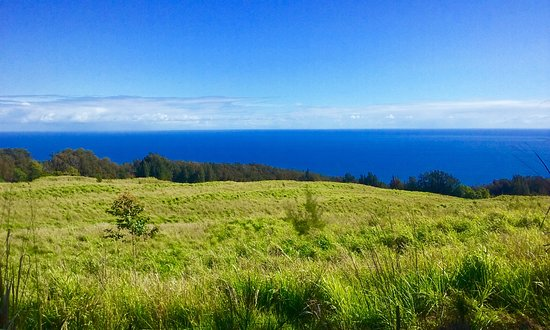 Honokaa, ฮาวาย: Hamakua Coast tours