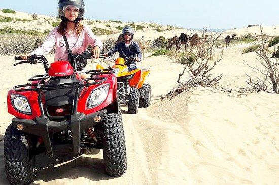 2h off-road ATV quad bike on the...