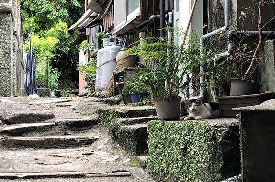 地元の人生を味わう:長崎の歴史的歩行ツアー