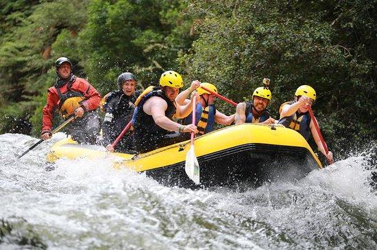 Rangitaiki River - White Water Rafting