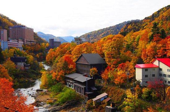 Jozankei og Sapporo Private Day Tour...