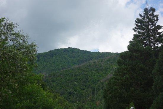 Svoge, Bulgaria: Природа