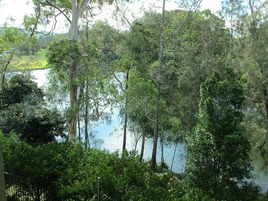 Kendall, Αυστραλία: Nice river views