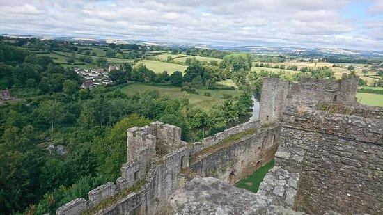 Ludlow Castle: DSC_1591_large.jpg