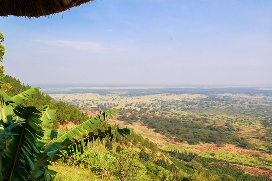 Masaka, Uganda: Queen Elizabeth Park
