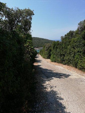 Martinscica, Kroasia: IMG_20180810_121526_large.jpg