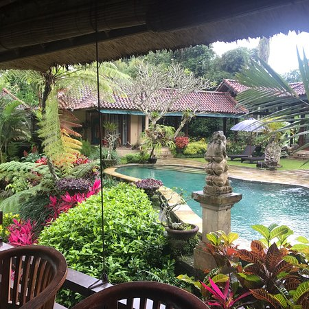 Villa Orchid Bali: photo1.jpg