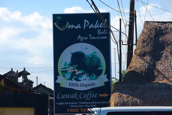 Uma Pakel Agro Tourism: Uma Pakel Bali