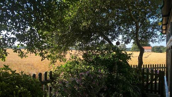 Horsey, UK: Views
