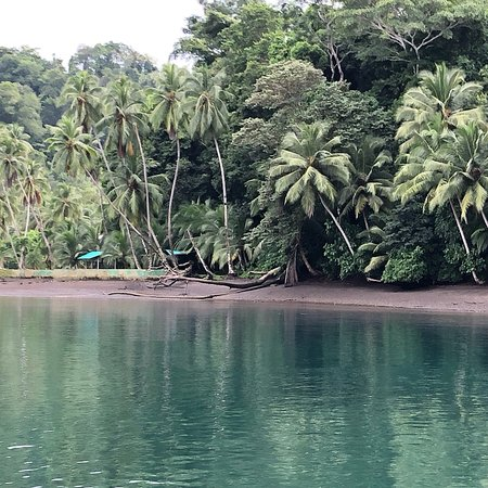 Punta Nicuesa, Costa Rica: photo3.jpg