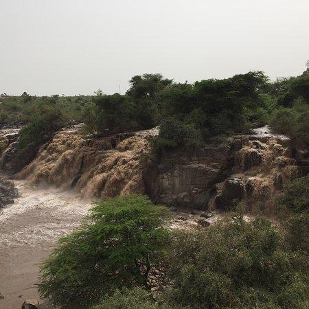 Awash National Park, เอธิโอเปีย: photo2.jpg