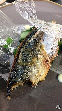 Ingatestone, UK: Pan fried mackerel, Hendricks gelee, macerated cucumber, cracked black pepper glass tuile