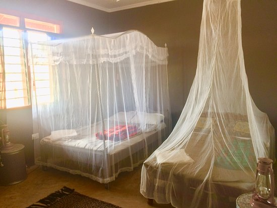 Oloitokitok, Kenya: N'Gaissi Large Room with 2 double beds for $37 per night.
