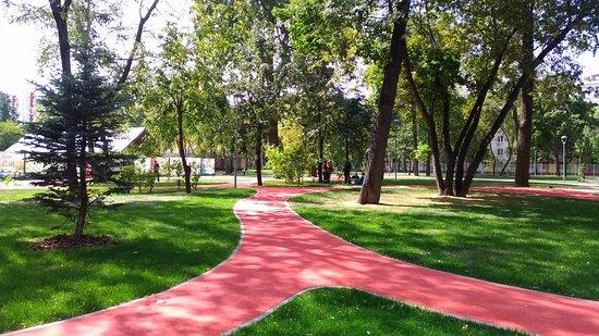 Festivalny Park