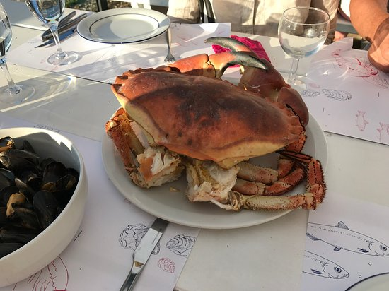 Rosnoen, Francia: The Dungeness Crab cooked and served.