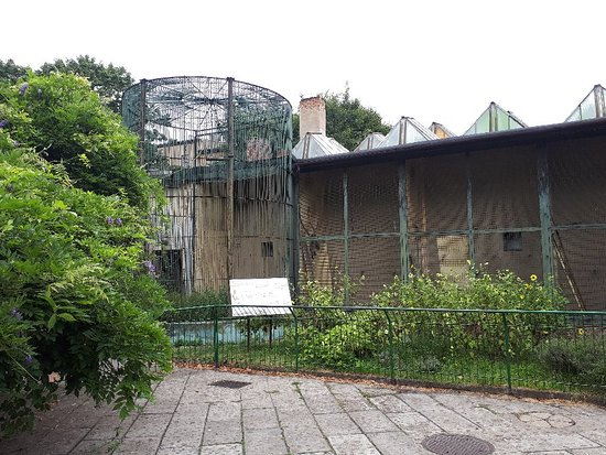 Stare Zoo Poznan