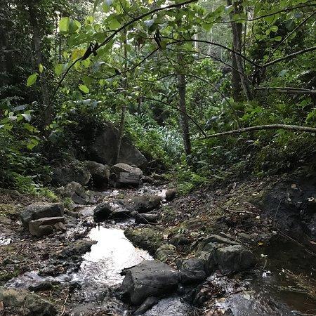 Deniyaya, Sri Lanka: photo3.jpg