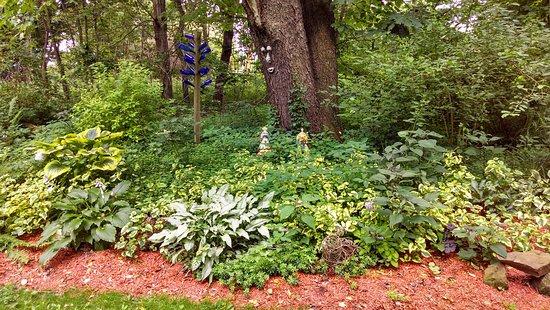 Shade garden at Plant's Herb Farm Bed & Breakfast