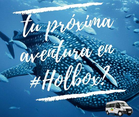 Transfer Holbox: Tu próxima Aventura en Holbox