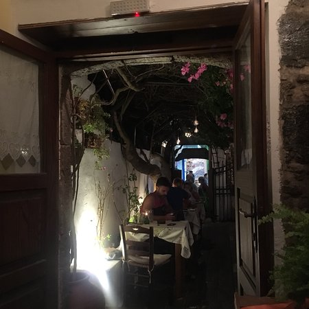 Avli Restaurant: photo5.jpg