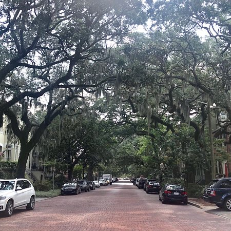 Savannah Historic District: photo1.jpg