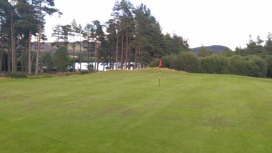 Bonar Bridge, UK: The green on the par 3 3rd hole - showing off my 2 best tee shots of the round!