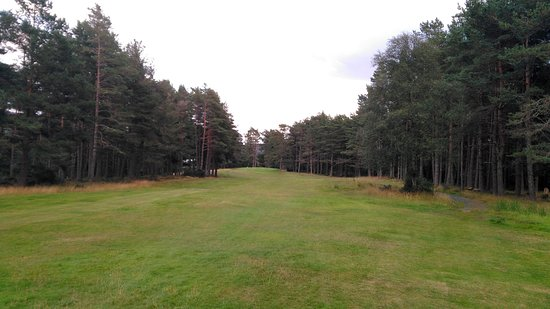 Bonar Bridge, UK: The downhill par 3 6th - It's not just photographic perspective narrowing the approach...