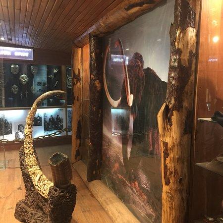 Museo de los Volcanes: photo4.jpg
