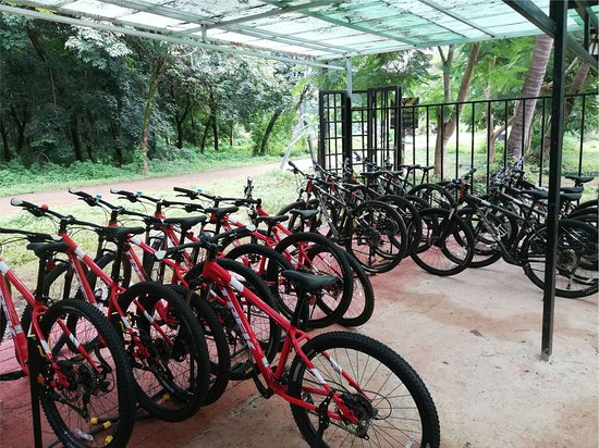 Koh Mak Information & Bike Rental