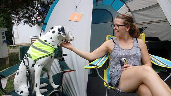 camping with our dog in a tent at camp medveja