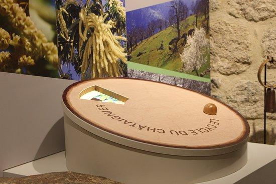 Castanea-Espace Decouverte de la Châtaigne d'Ardèche