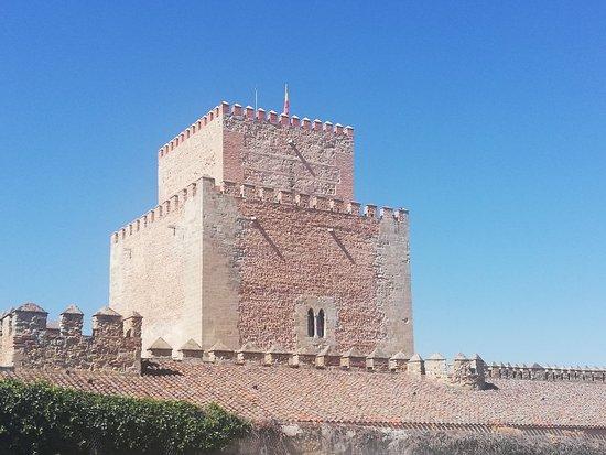 Castillo Alcazar de Enrique II