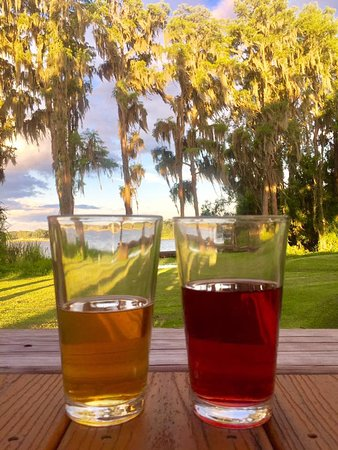 Land O Lakes, FL: cider and a beer with a great view