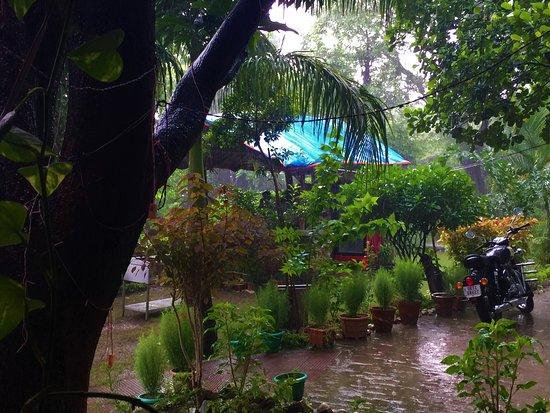 Tapovan, Indien: The Garden!