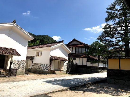 Tanabeke Dozogun