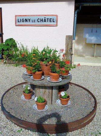 Zdjęcie Ligny-le-Chatel
