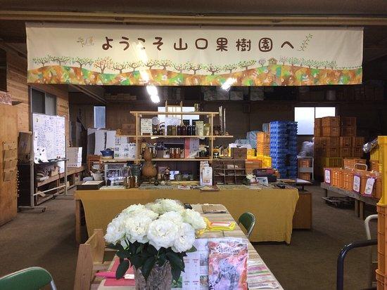 Yamaguchi Orchards