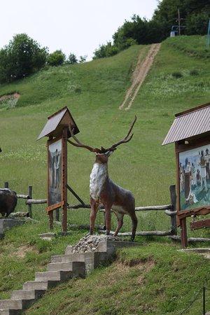 Chernivtsi Oblast, ยูเครน: Перевал Нимчич